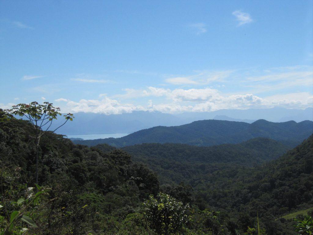 Vila Mont Omgeving Bergen Braziliaans Oerwoud